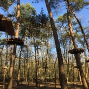 treetop adventure climbing